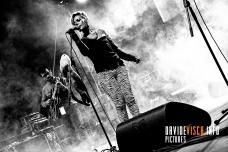 Rockalvi 2013