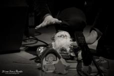 10 John De Leo e Fabrizio Puglisi @ Casa del Jazz (RM)