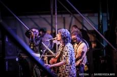 Ariano Folk Festival 2014